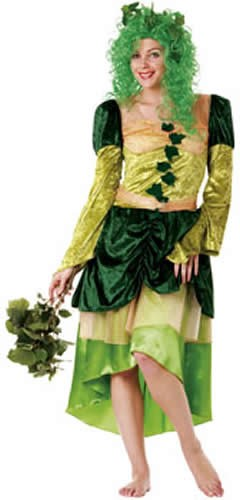 Schöne Elfe Fee Karneval Fasching Kostüm 38-40
